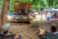 Bluegrass & Piedmont Blues